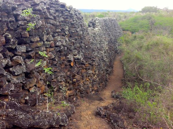 Isabela Galápagos Wall of Tears